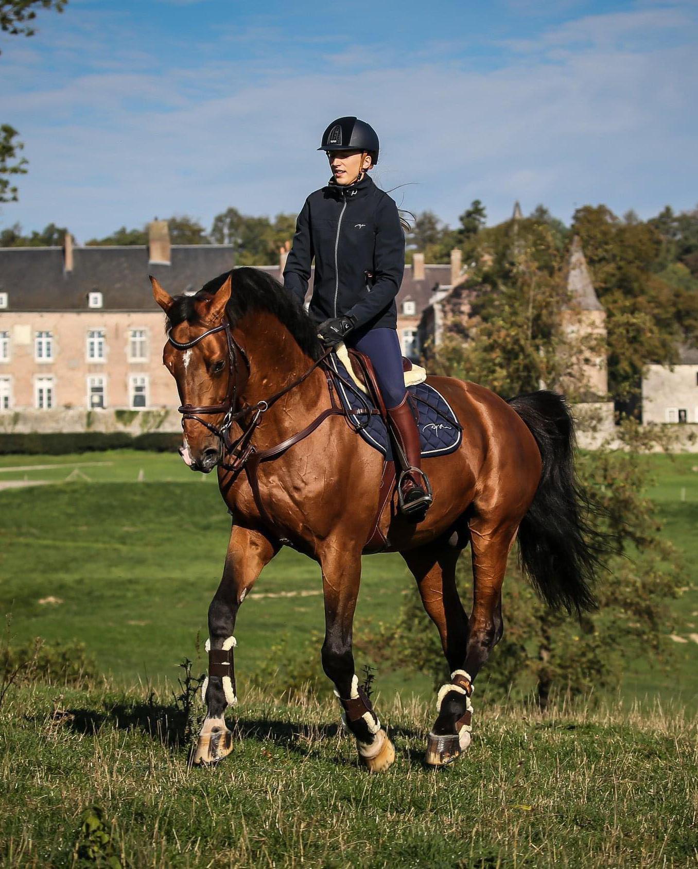 Uitrusting voor paarden